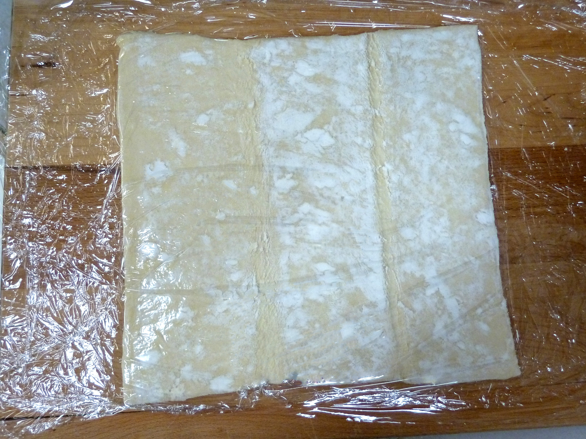 Place the puff pastry between two sheets of plastic wrap.