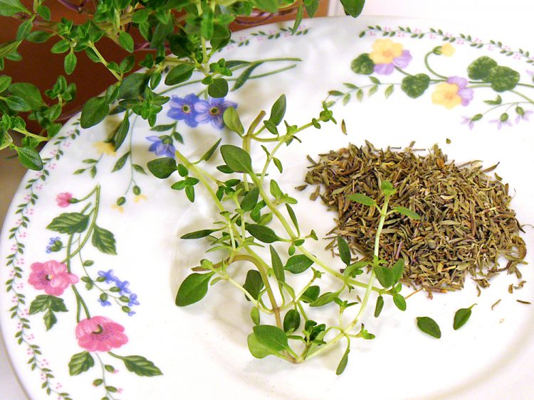 All about thyme, including history, selection, storage, health, and cooking tips.