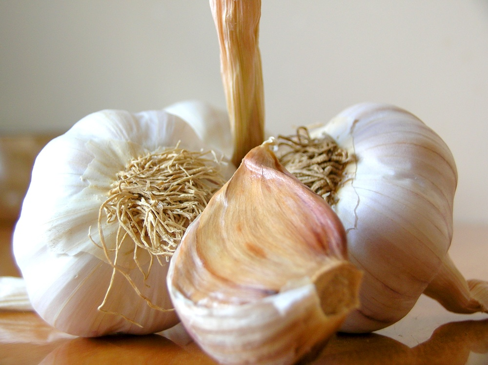 Garlic heads and cloves. Garlic Facts, Tips, Storage, and Health.